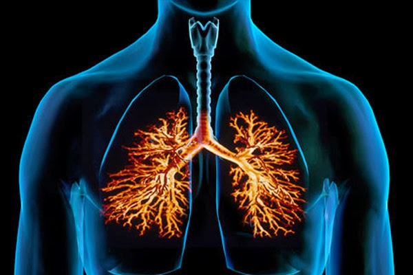 BRONCHITIS contraindications In beauty therapy