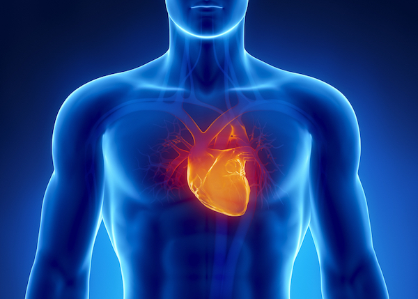 HEART CONDITIONS contraindications In beauty therapy
